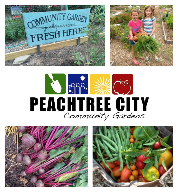 Registration for plots in the Peachtree City Community Garden takes place in February.