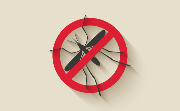 Tips to tame mosquito menace in your yard