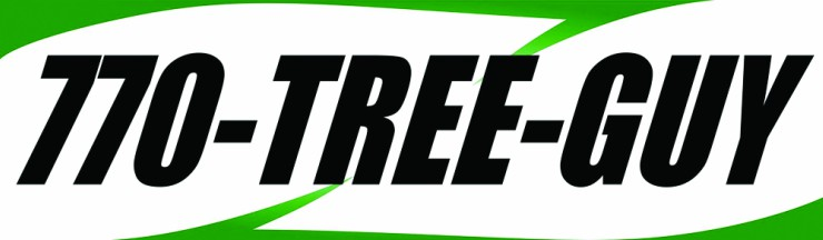 770-Tree-Guy is Fayette's only tree company with a Certified Arborist