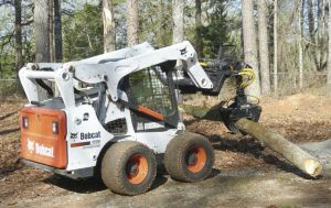 Working with trees properly and safetly requires a lot of knowledge and experience