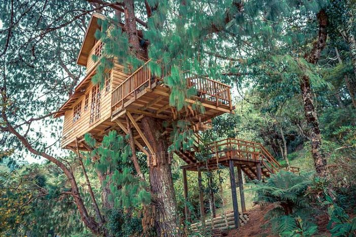 Treehouses approved as residences, businesses in Fayetteville